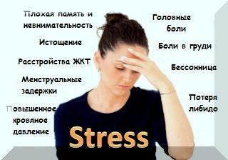 магний защищает организм от стресса и его последствий